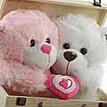 You And Me Teddies Wooden Treasure Box at Kapruka Online